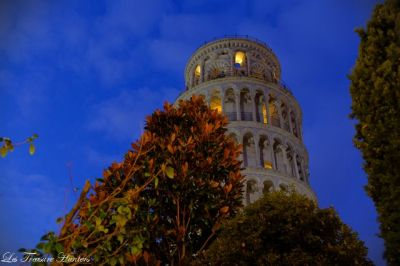 how to visit pisa