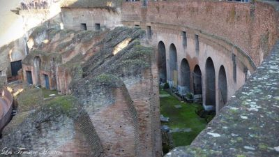 how to visit colosseum?