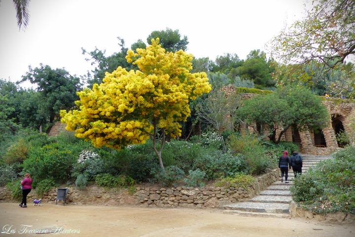 Visit Park Guell, Barcelona