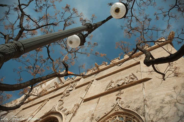 best things to see in valencia