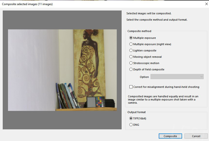 Composite Selected Images in Silkypix Developer Studio Pro 10